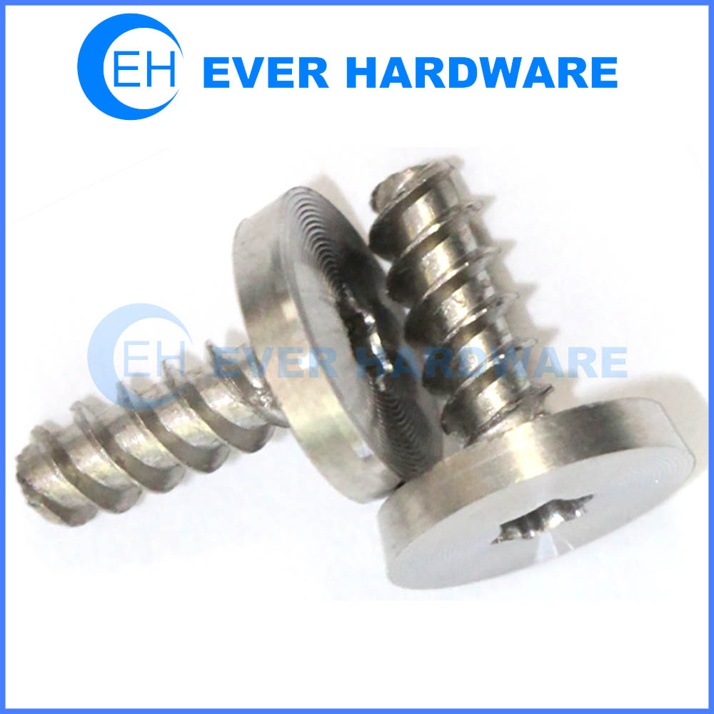 Decorative Electrical Screws Stainless Steel Taping Threaded Torx