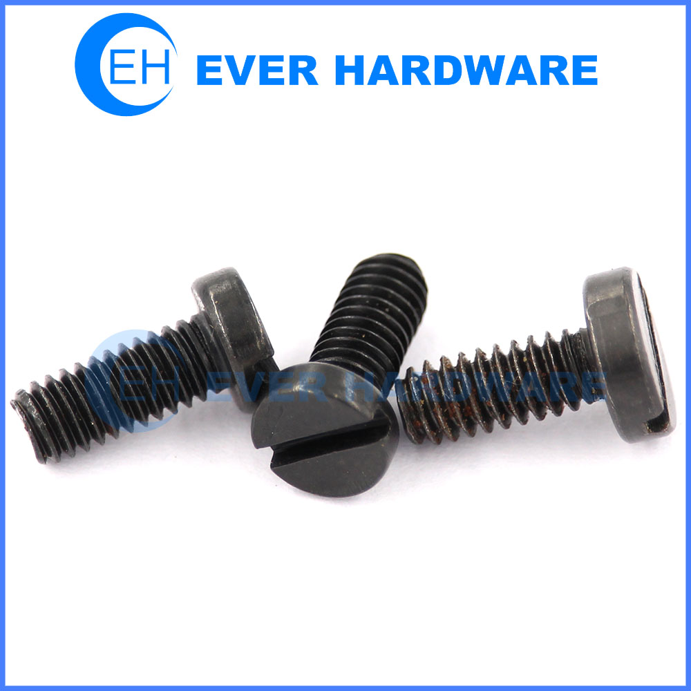 Fillister head screw black coating cheese slotted head machine screws