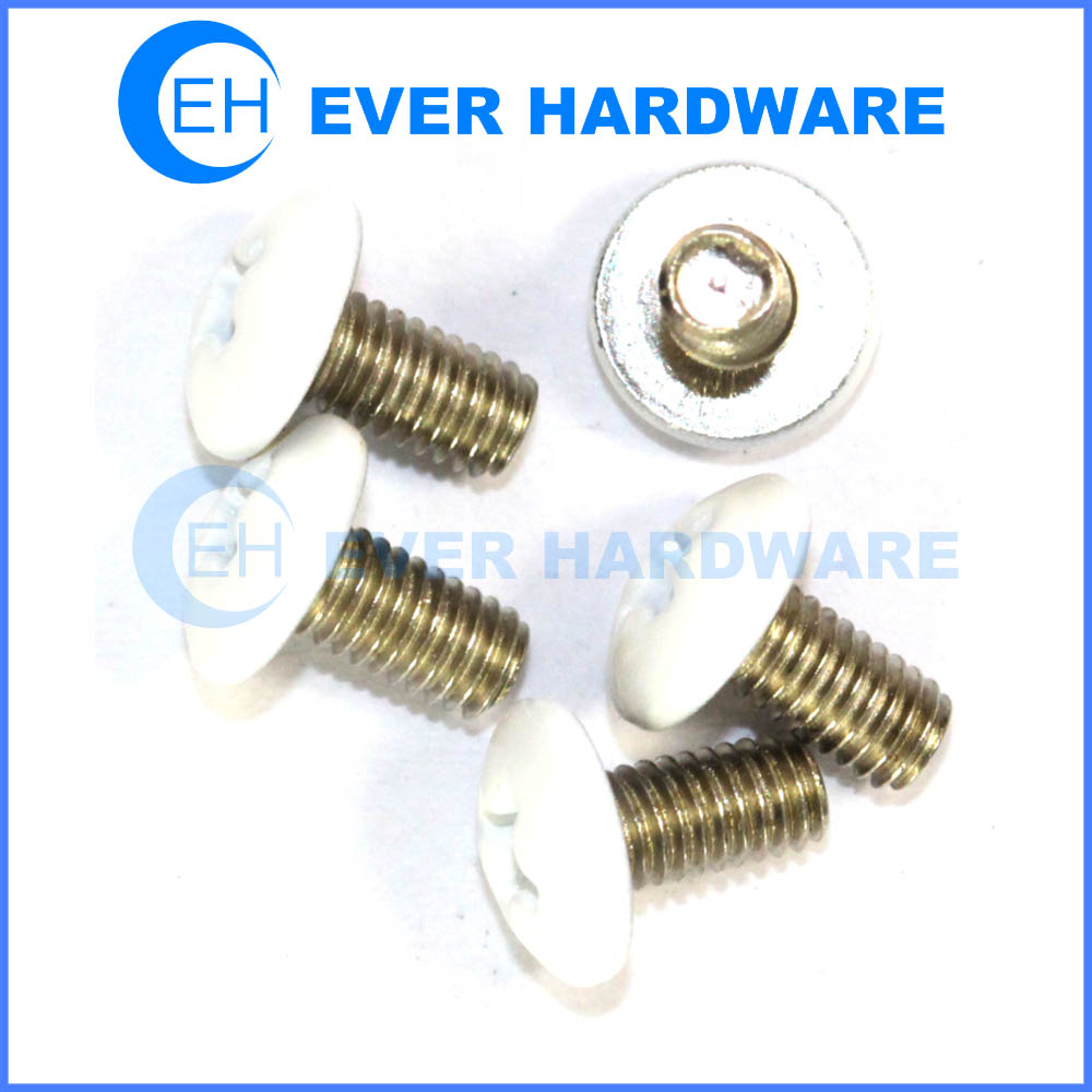 White Head Screws Coloured Top Painted Head Phillips Pan