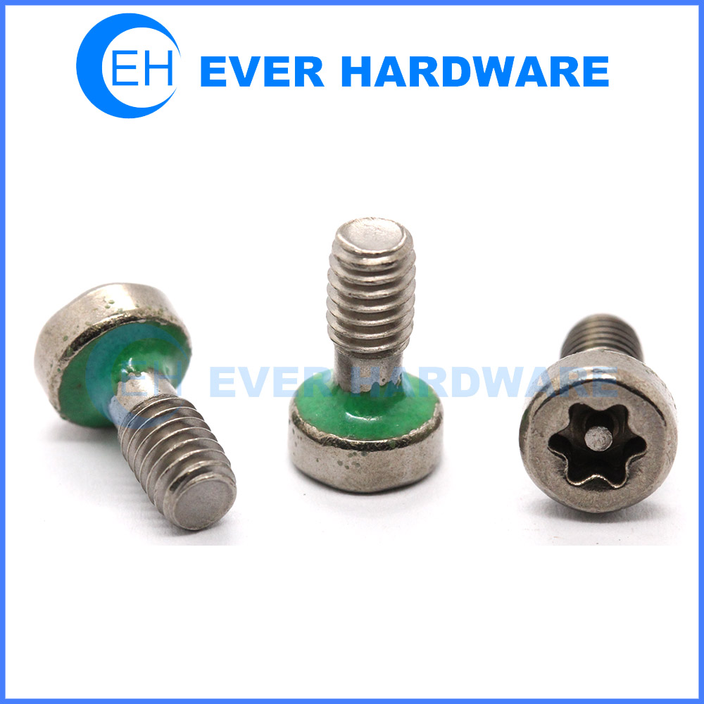Tamper Resistant Screws Cylinder Head Torx Security Sealing Machine